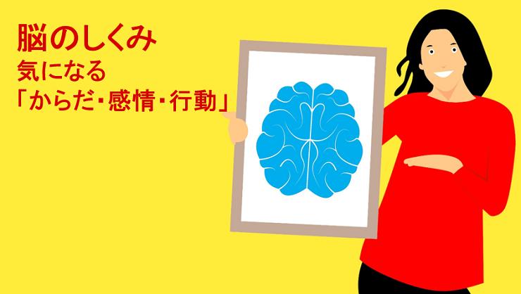 第243号 脳のしくみ 気になる「からだ・感情・行動」